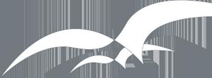 Sartor Logo