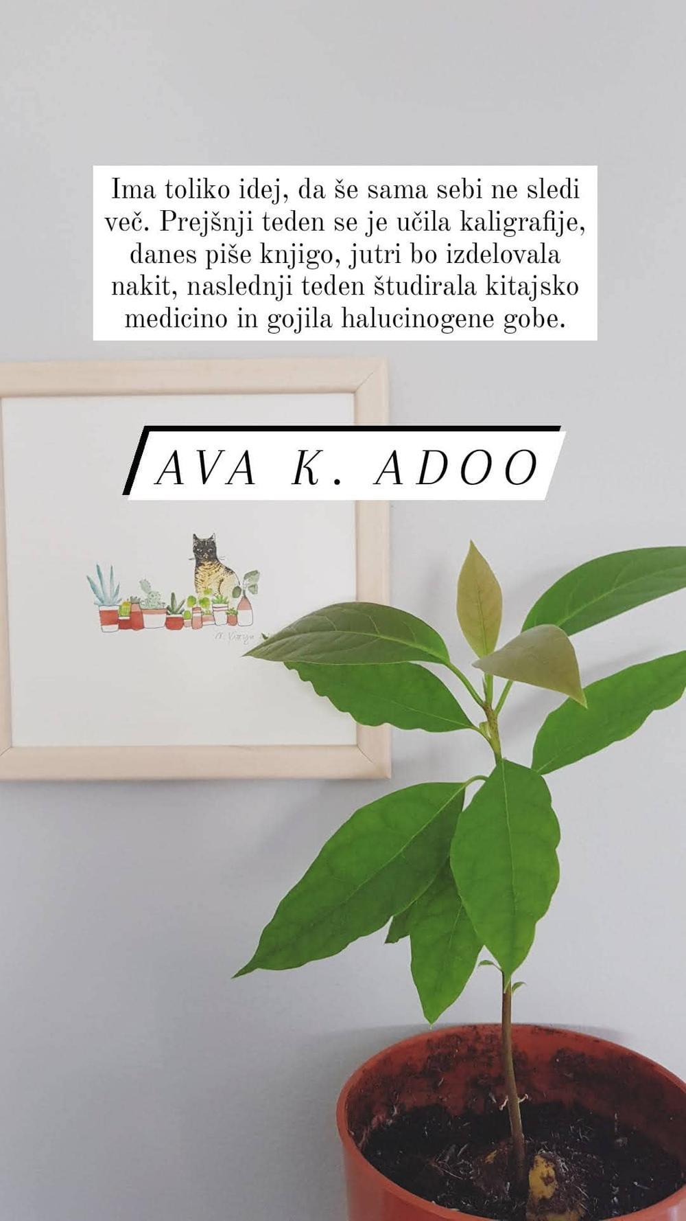 Ava K. Adoo