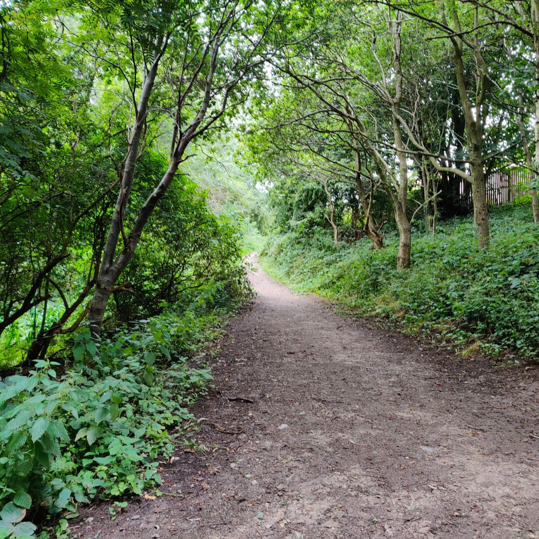 Sugarwell Hill Park Footpath