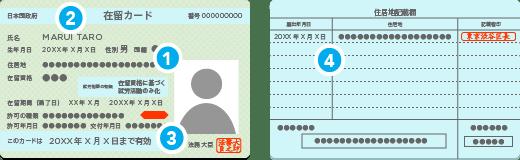 在留カード登録証明書のイラスト