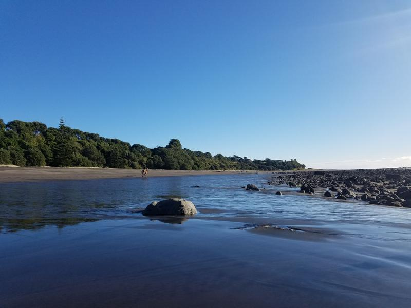 Black sand Oakura beach