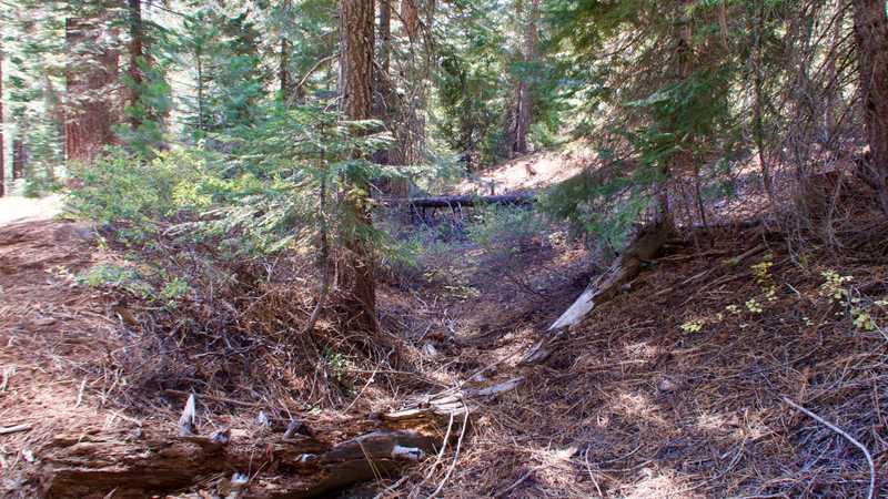 Dutch Hill ditch