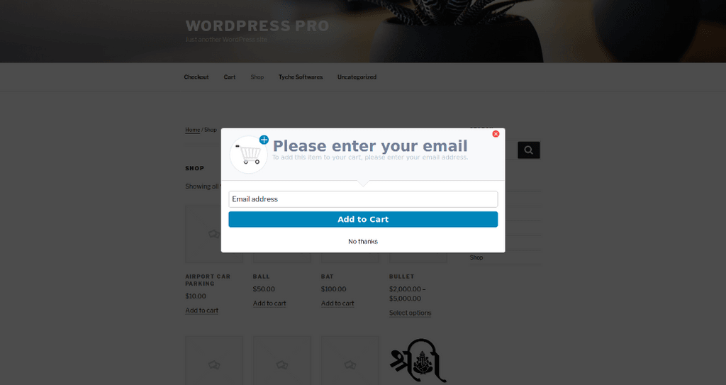 Enter your email popup
