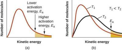 Image result for number of collisions vs kinetic energy