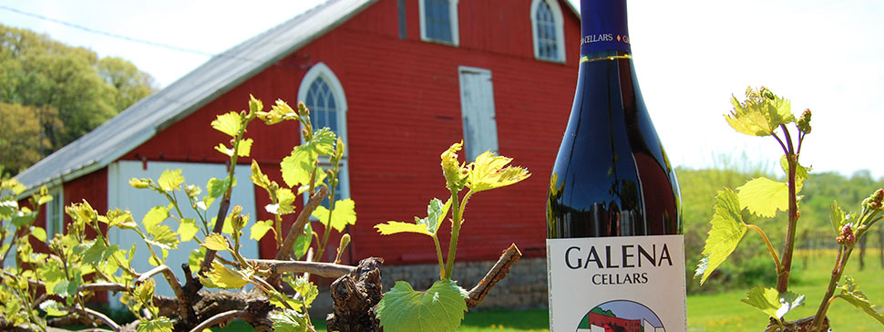 Galena Cellars Winery