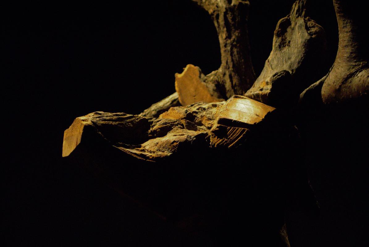 IlGattaRossa - 18 Mar 2015 - I Mangiatori di Patate - 02_DSC_0554_01