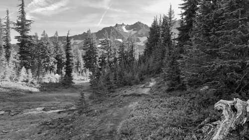 Trail leading to Diamond Peak