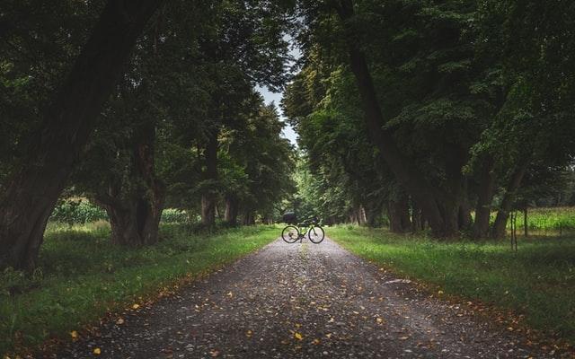 Gravel Bike Hobby