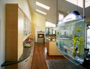 Understanding Home Aquarium