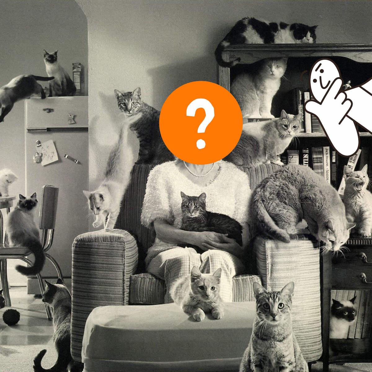 Неизвестная леди вокружении котов. Иллюстрация Bookmate Journal