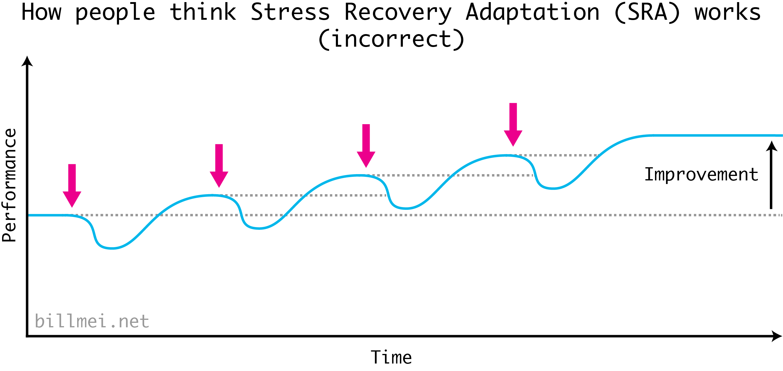 The classic diagram of the Strength Recovery Adaptation (SRA) cycle. Just as you recover to a higher baseline, you perform another workout to apply additional stress, and in order to move your fitness baseline even higher