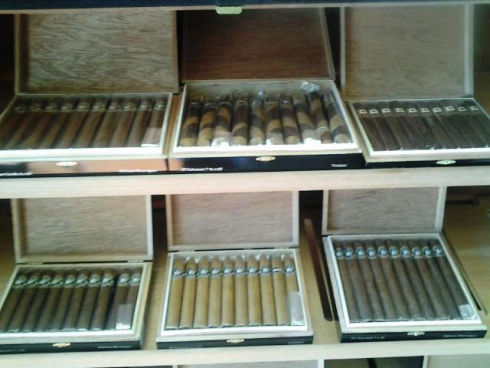 Mild Strength cigars in Davie, FL 33314