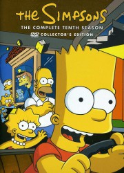 cover The Simpsons - S10
