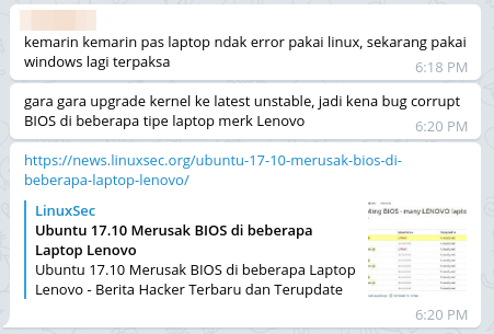Chat Linux Mint