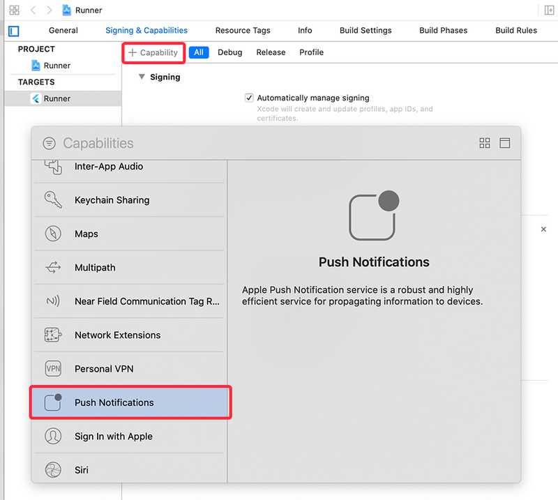 Turn on Push Notifications and Background Modes in XCode