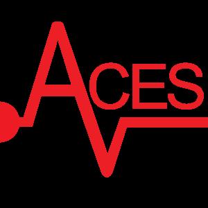 Aces Inc.