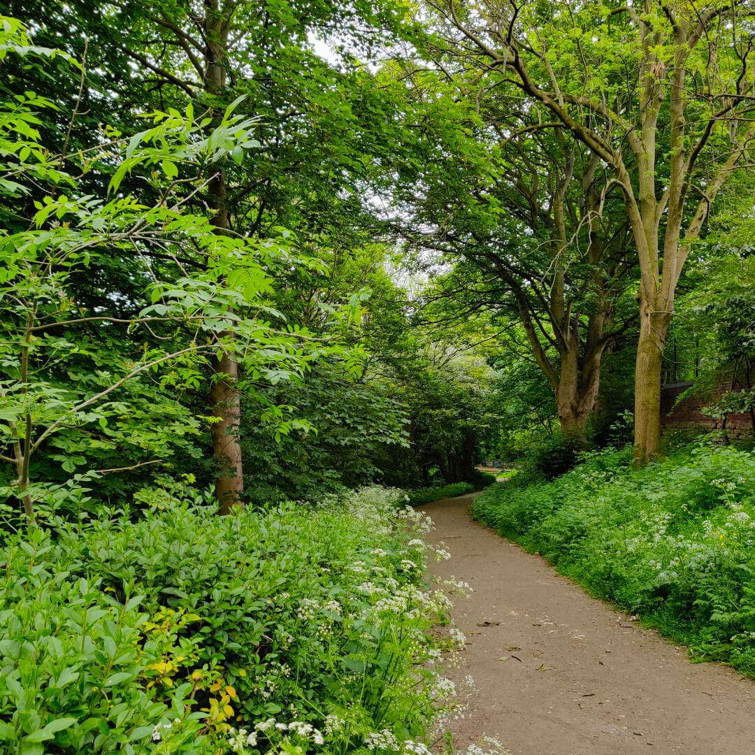 Meanwood Valley Local Nature Reserve bridge path in Meanwood