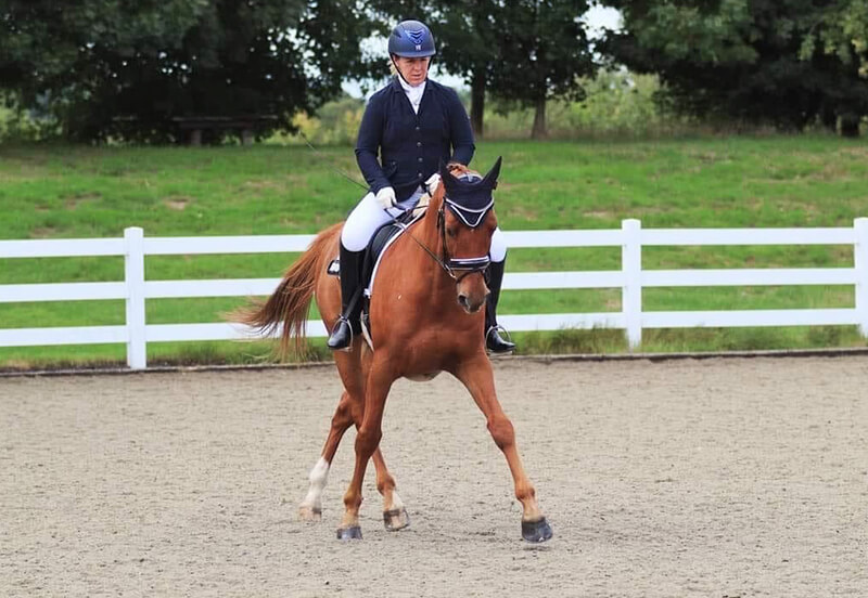 How to teach your horse to leg-yield