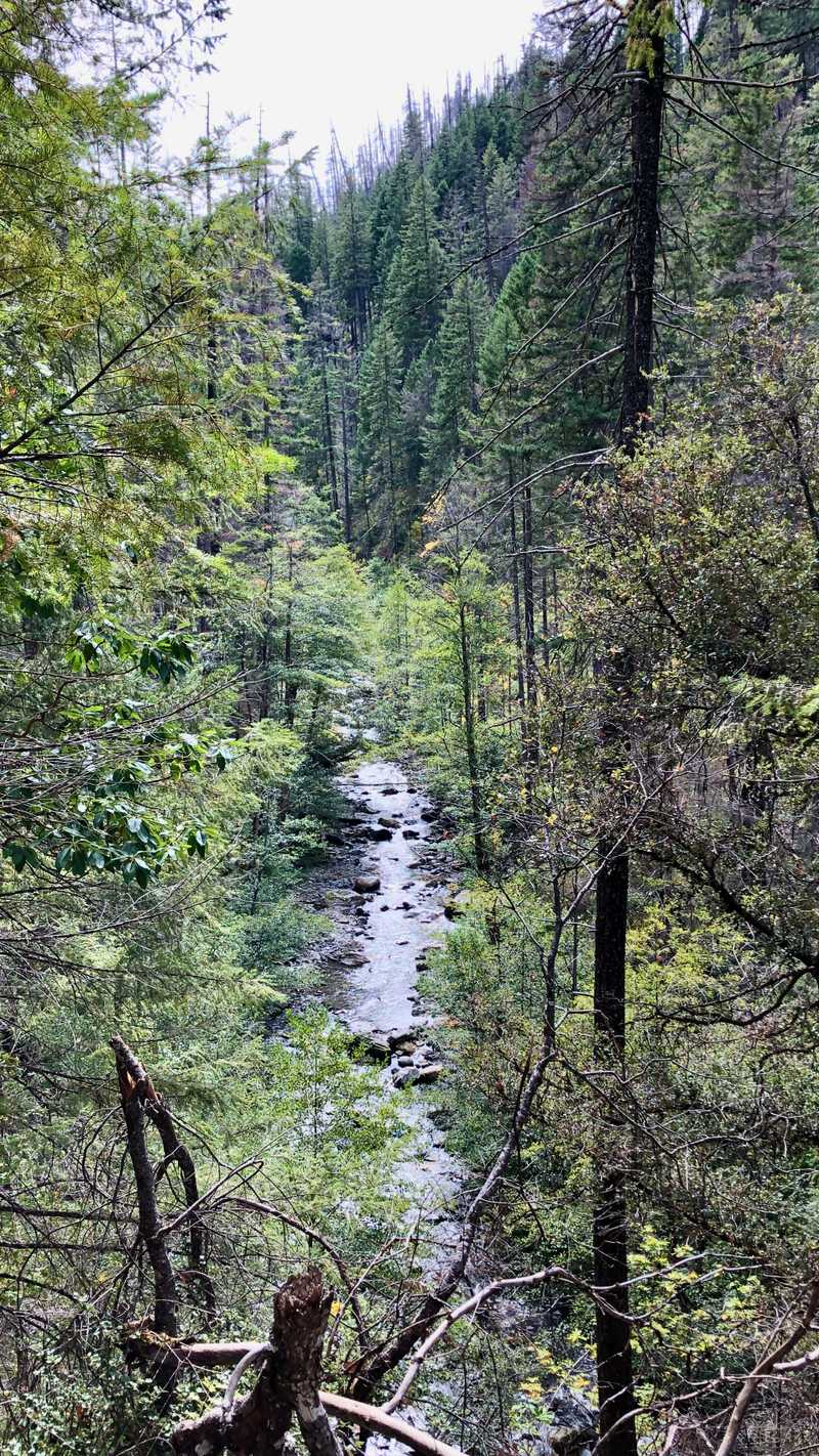 A view of Grider Creek