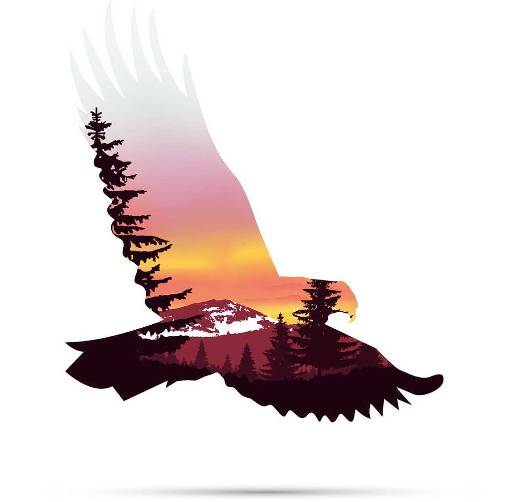 painting of eagle flying over mountain symbolizing hope
