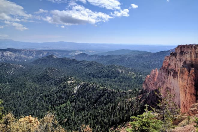 A fin of soft red and white rock extends from the South Wall of Bryce Canyon. The fin is quickly reduced to a series of pillars, and then a low, pine tree covered ridge that can be seen to extend some distance into the forest below.