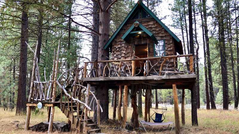 Firefly's treehouse