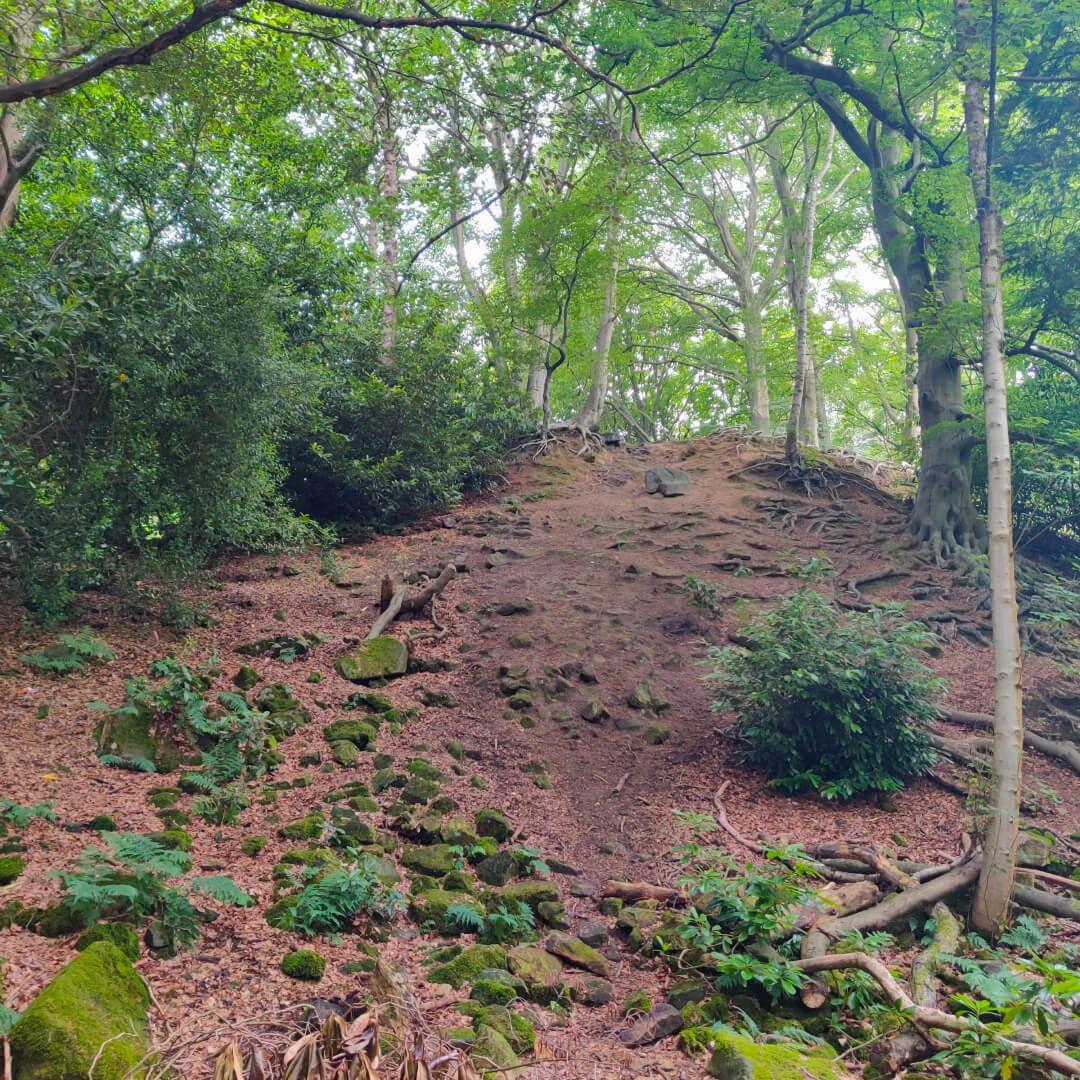 The Hollies Leeds steep hill