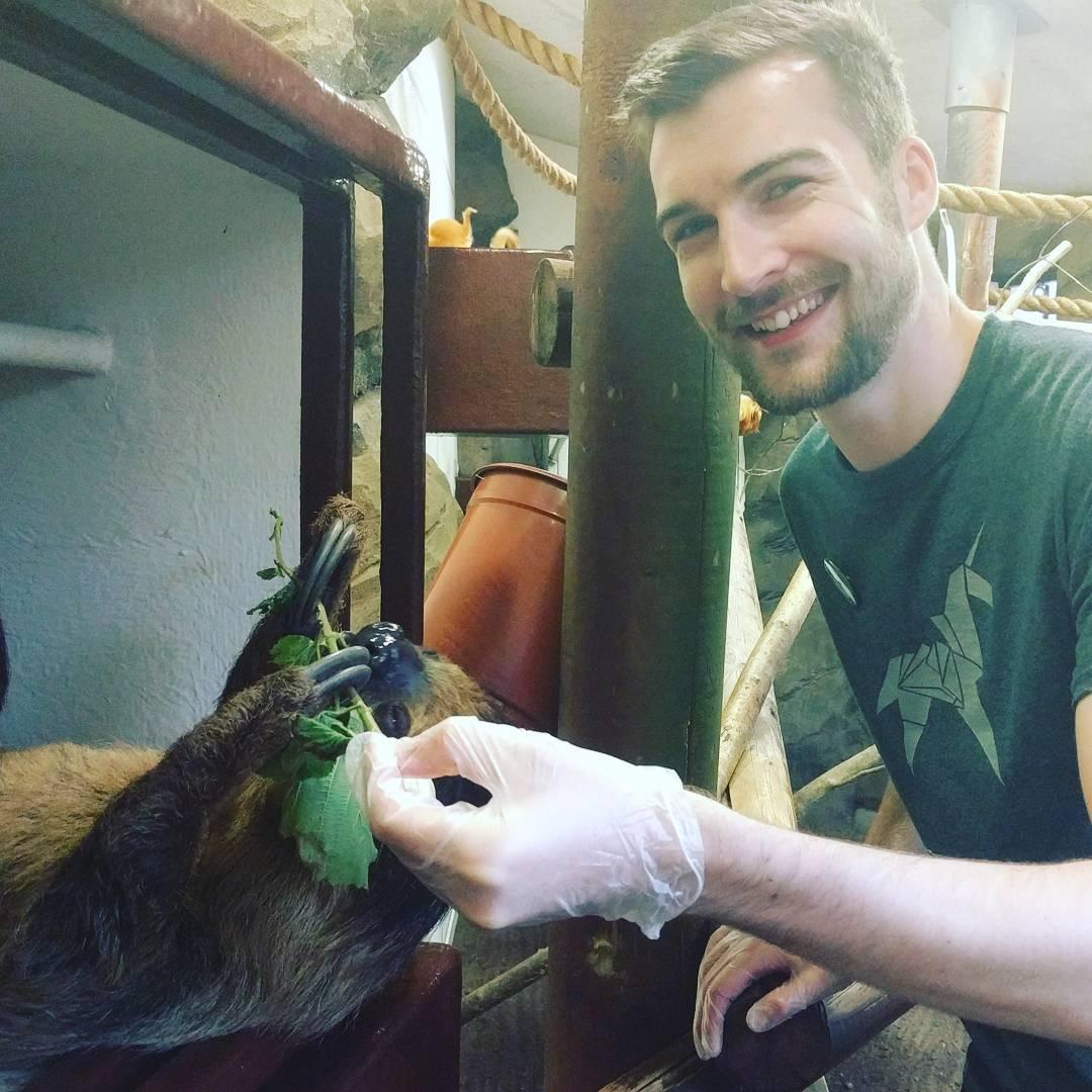 Feeding sloths