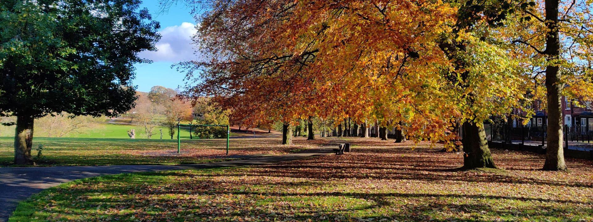 Potternewton Park view across the park