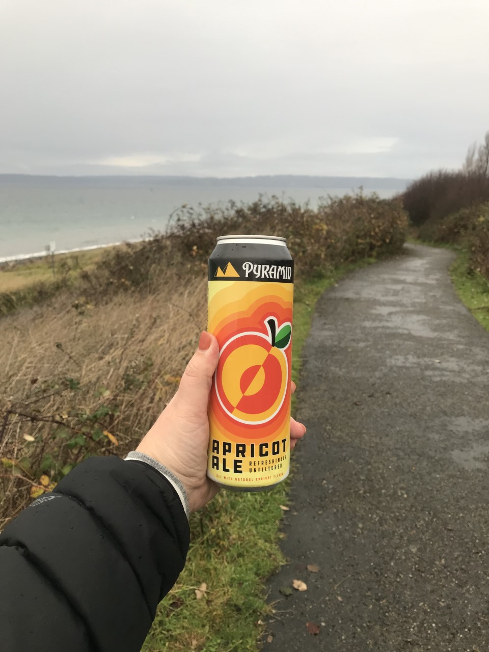 Hand holding a can of Pyramid Apricot Ale in front ofa paved path through a wild grassy hill along a seashore.