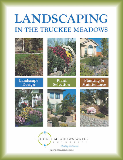 Landscaping in the Truckee Meadows guide