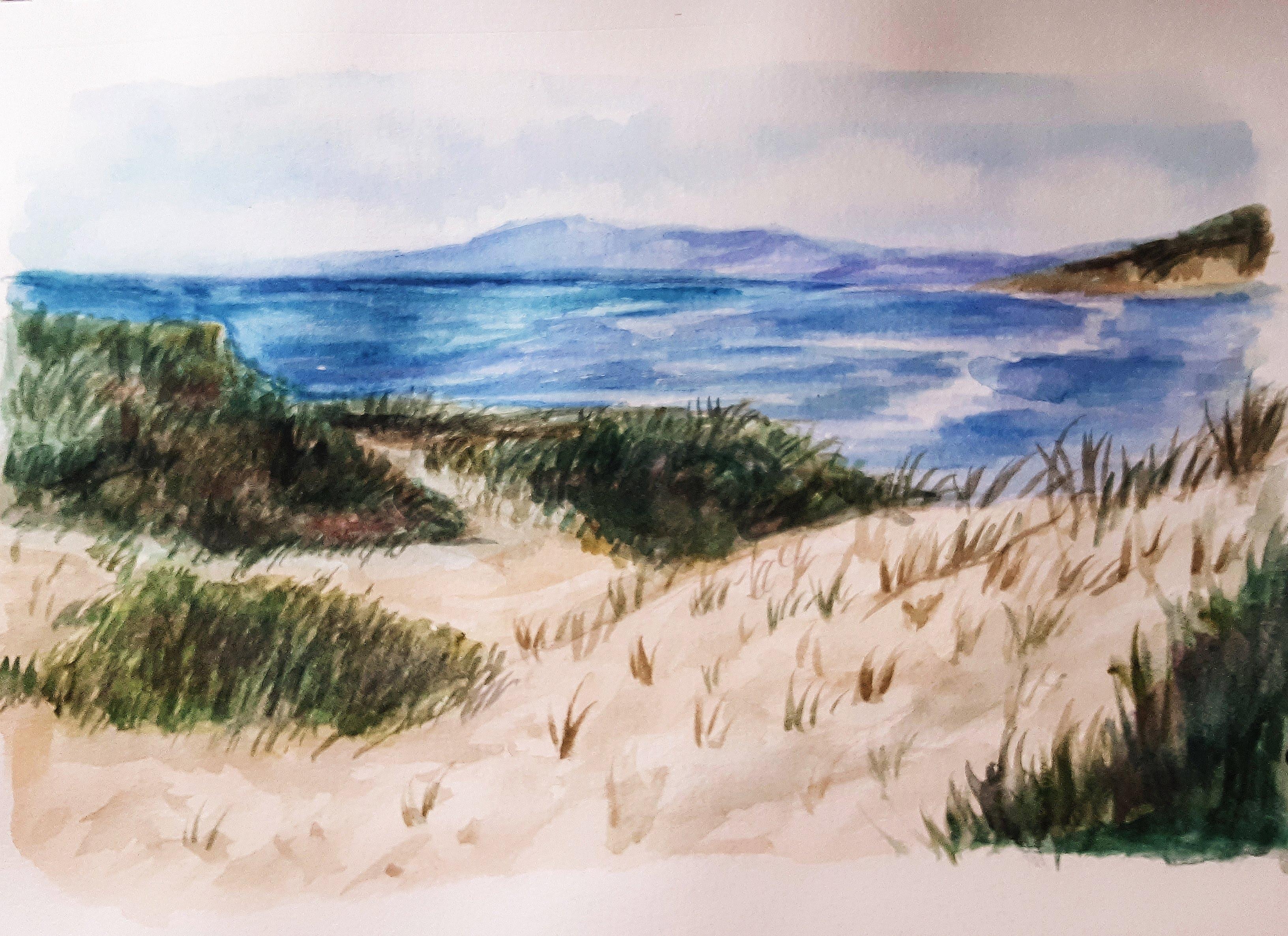 Sandy Grass
