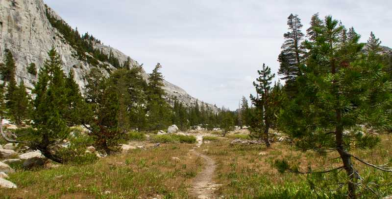 Flat trail in Kerrick Canyon