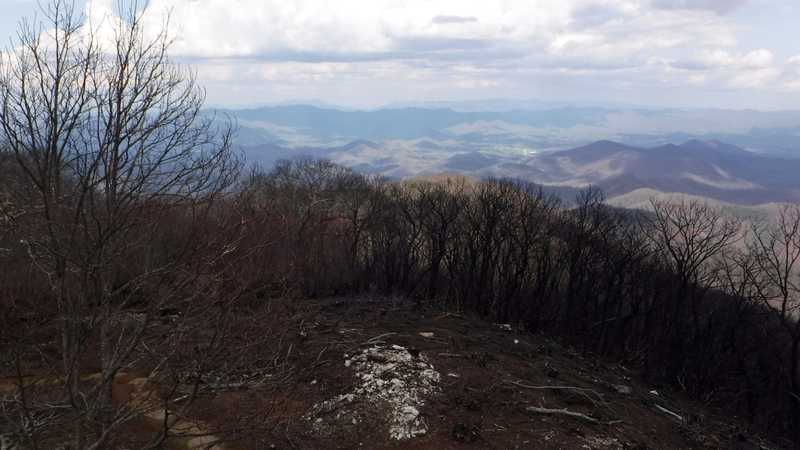 View from Wayah Bald