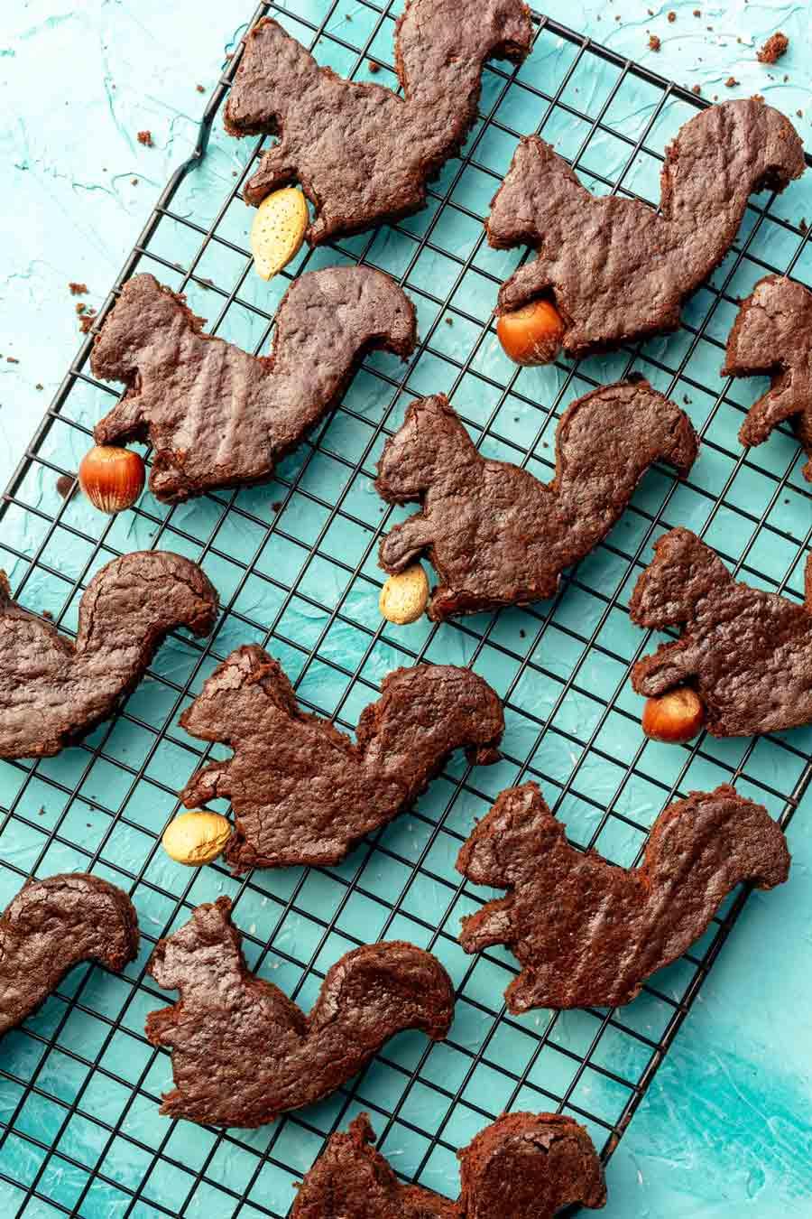 Vegan Squirrel Brownies