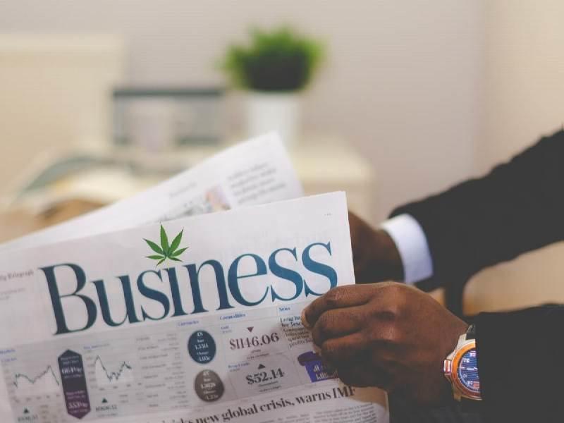 Australia's Cannabis Business Opportunities
