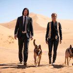 Keanu Reeves como John Wick e Halle Berry como Sofia em Parabellum