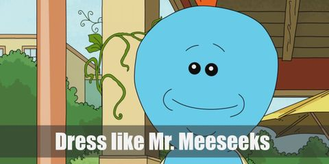 Mr. Meeseeks is an alien creature that is blue all over and doesn't have any defining characteristics.