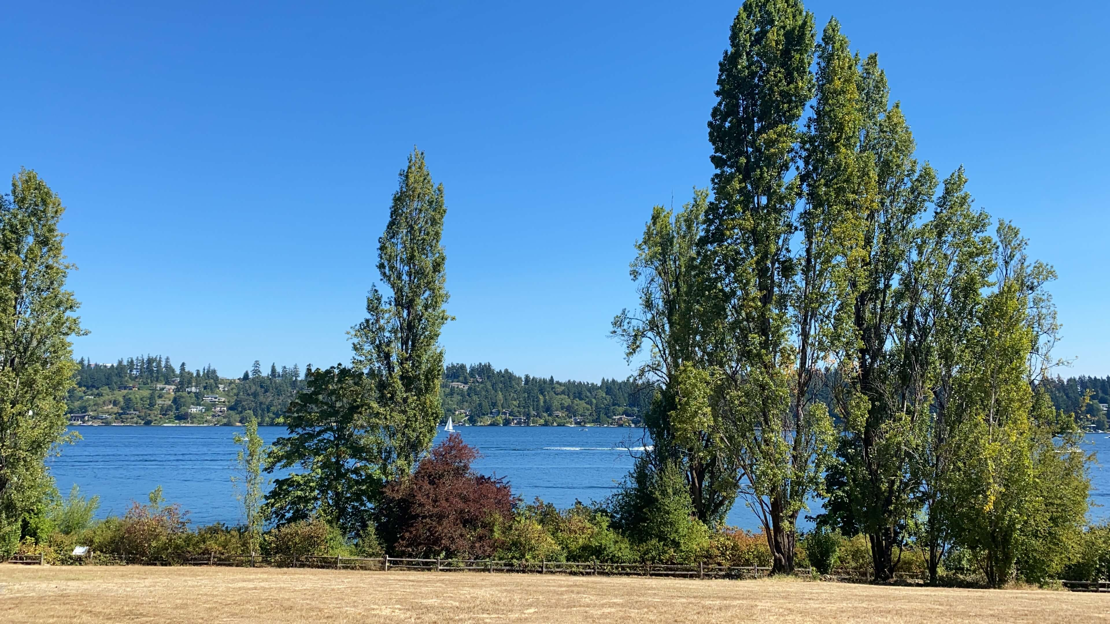 Hanging out with friends at Luther Burbank Park