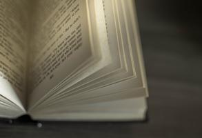 Miglior font gratuito per pubblicare un libro [FSL#2]