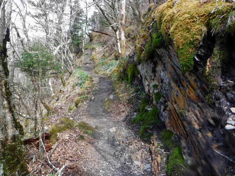 Trail cut in rocks