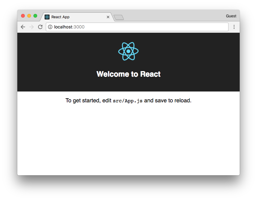 Launch the react app