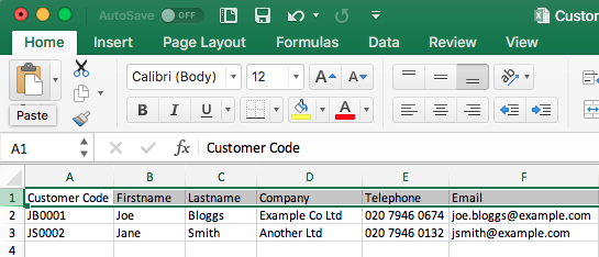 Excel Customer Database Example