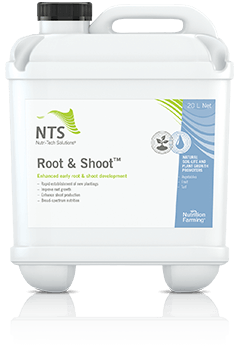 root and shoot