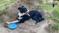 Nina acostada en la tierra, junto a su frisbee azul.