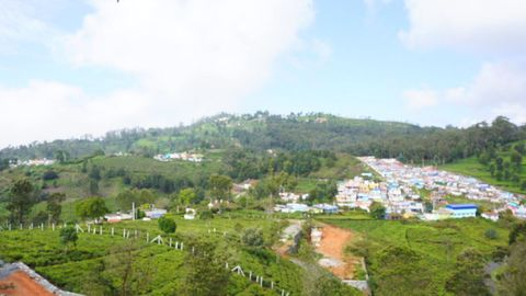 View from plot C-8