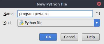 Memberikan nama file python di pycharm