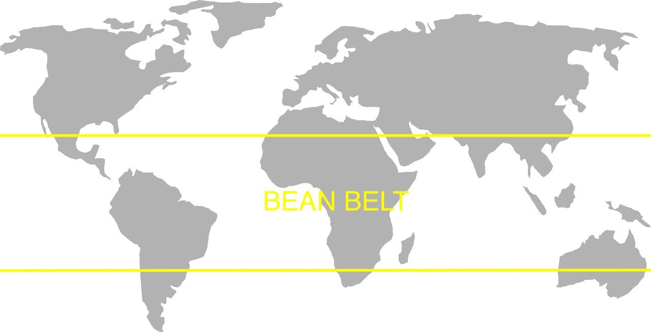Coffee belt image
