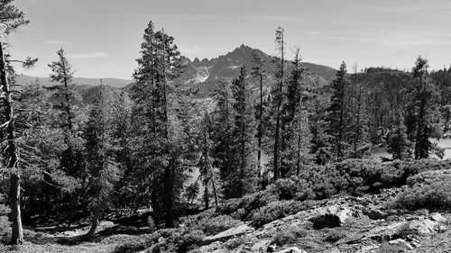 A view of Sierra Buttes