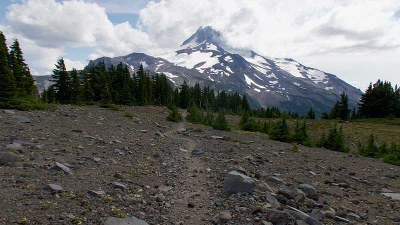 The PCT heading to Mt. Jefferson